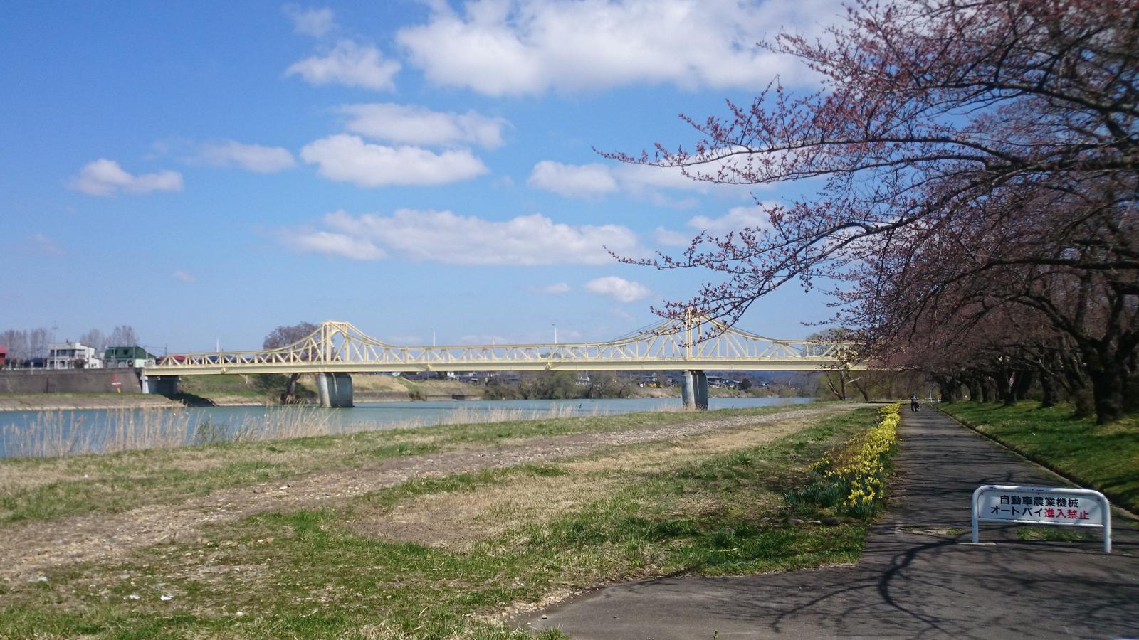 北上川にかかる珊瑚橋